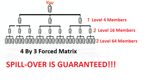 4-by-3-forced-matrix